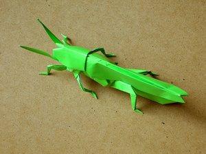 Жук носорог оригами 126
